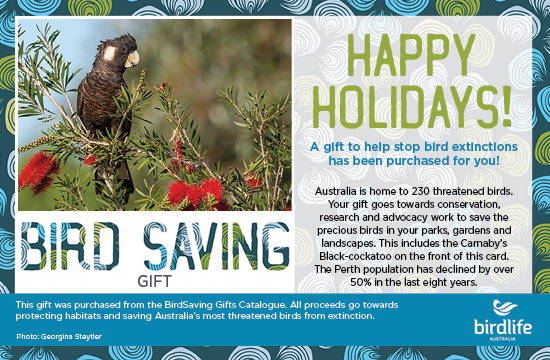 $10: Bird Saving Gift!